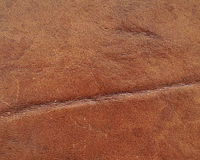 Genuine  leather, natural background Stock Photo