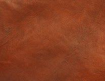 Polished shiny leather texture background Stock Photo