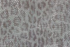 Genuine leather texture background close-up, embossed under the skin a beautiful imitation of leopard, blue color print. Genuine leather texture background close royalty free stock photo