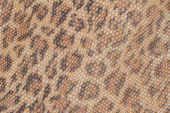 Genuine leather texture background close-up, embossed under the skin a beautiful pattern of leopard, Natural shades. Genuine leather texture background close-up royalty free stock photo