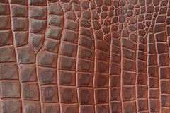 Genuine leather texture backgroundr close-up, embossed under the skin a reptile, brown color print. Natural backdrop Stock Photos