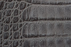 Genuine leather texture backgroundr close-up, embossed under skin reptile, crocodile skin print. For artisan backdrop Stock Photography