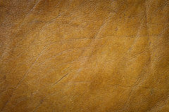 Genuine leather texture Royalty Free Stock Photos