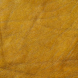 Genuine leather texture Stock Photography