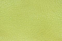 Genuine leather texture, lime, light green color. Modern background, backdrop, substrate, composition with copy space. Genuine leather texture, lime, light green Royalty Free Stock Image