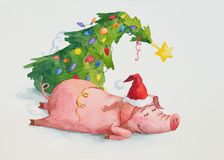 Genuine Portrait Of The Little Pig After New Year Party Royalty Free Stock Photos