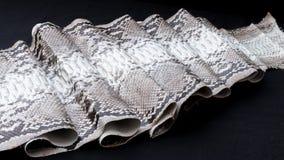 Genuine Python snakeskin leather, snake skin, texture, animal, reptile on a black background. Stock Photography