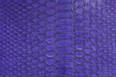 Genuine python snakeskin leather, snake skin, texture background. stock photos