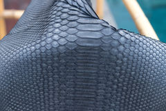 Genuine python snakeskin leather, snake skin, texture background. Swimming pool on a background. Stock Images