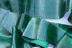 Genuine snakeskin leather, snake skin, texture background. stock image