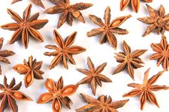 Genuine star anise (Illicium verum) Royalty Free Stock Images