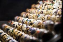 Genummerde wilde dierlijke vogel kleurrijke eibroedplaats binnen warme lichte incubator royalty-vrije stock afbeelding