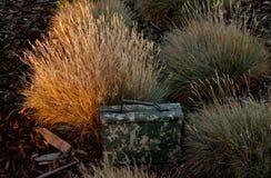 Geocache @ Sunset (landscape) Royalty Free Stock Photography