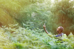 Geocaching in sunlit forest. Hiker searching way to cache using global positioning device, lit by shiny golden sunlight Royalty Free Stock Photos