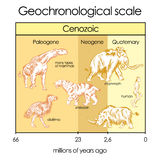 Geochronological scale. Part 5 - Cenozoic Eon Royalty Free Stock Photo