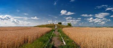 Geodätisches Ð  рк Struve für das Messen des Landes auf dem Weizengebiet lizenzfreie stockfotos