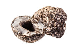 Geode. An open amethyst geode isolated over a white background Royalty Free Stock Photography