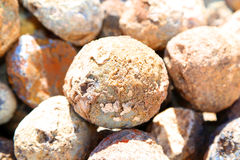 Geodes Stock Image