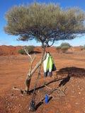 Geodeta GPS napoju kurtka w drzewnym odludziu Australia i butelka Fotografia Royalty Free