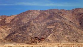 Geoglyphs在12点活字附近镇的Pintados Cerros,在公社 库存图片