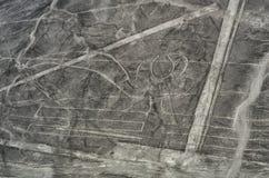 Geoglyphs e linhas no deserto de Nazca peru imagem de stock