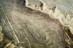Geoglyphs e linhas no deserto de Nazca peru foto de stock royalty free