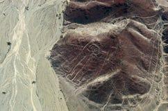 Geoglyphs e linhas no deserto de Nazca peru imagens de stock