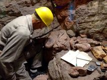 geologe lizenzfreies stockbild