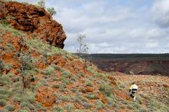 Geologe Prospecting für Eisenerz - Pilbara - Australien lizenzfreie stockbilder