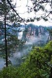 Geologia e paesaggio di Zhangjiajie Immagine Stock