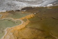 Geologic Abstract Art. Algae and hot water create unique color patterns throughout Yellowstone National Park. These patterns create great abstract images Royalty Free Stock Photos