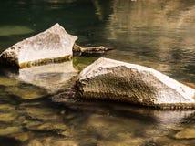 Geologic features facing Konglor cave. Konglor, Laos Royalty Free Stock Photography