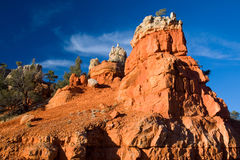 Geologic rock formations. Scenic view of red geologic rock formations in Red Canyon, Utah, U.S.A stock images