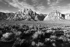 Geologic Rock Formations Red Rock Canyon Las Vegas USA Stock Images