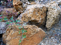 Geologic. Rock stone elements nature geological mineral evolution geode crystal growth jewell Stock Images