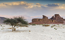 Geological formation in Timna park, Israel Royalty Free Stock Images