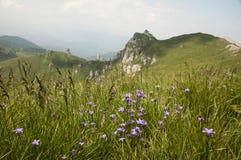 Ciucas Mountains. Geological formations, Ciucas mountain in Romanian Carpathians Stock Photography