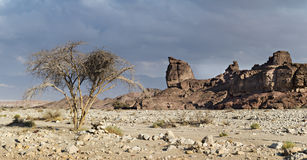 Geological formations and desert valley of Timna park, Israel Stock Image