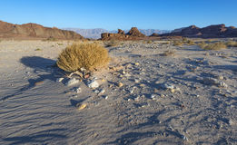 Geological formations in nature desert park of Timna, Israel Royalty Free Stock Image