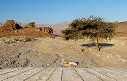 Geological formations in Timna Park, Israel Stock Image