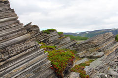 Geological rock layers Stock Photography