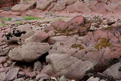 Geological study cliff face, pembrokeshire, wales. Royalty Free Stock Photos