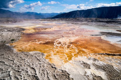 Geological wonders of Mammoth Hot Springs Yellowstone Park Royalty Free Stock Image