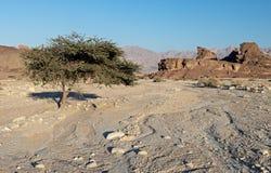 Geologische Anordnungen im Timna Park, Israel Lizenzfreies Stockfoto
