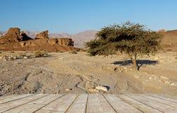 Geologische Anordnungen im Timna Park, Israel Stockbild