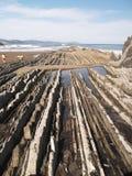 Geologische vouwen in strand Zumaias Royalty-vrije Stock Afbeeldingen