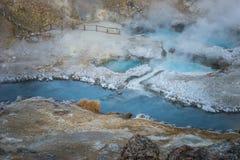 Geologisk plats för kokande vulkanisk varm liten vik nära kolossala sjöar på en vintermorgon royaltyfria bilder