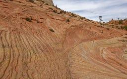 Geologiska bildande av Zion National Park, Utah arkivfoto