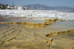 Geologiska terrasserade bildande på Mammothet Hot Springs terrasserar, den Yellowstone nationalparken, Wyoming, USA Royaltyfria Bilder
