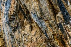 Geologiskt vagga upp fullt av åder i ett bakgrundssammansättningsslut royaltyfri fotografi